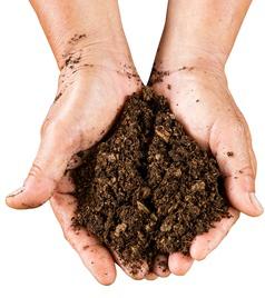 moldovan-soil-3